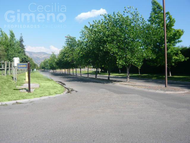 Sitio en Venta, Chicureo Oriente